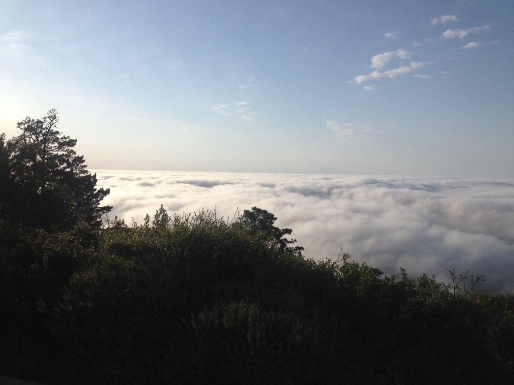 2015 MT Mt. Tam